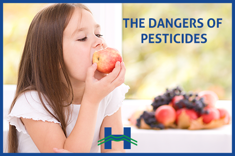Pesticides as a Major Health and Environmental Concern
